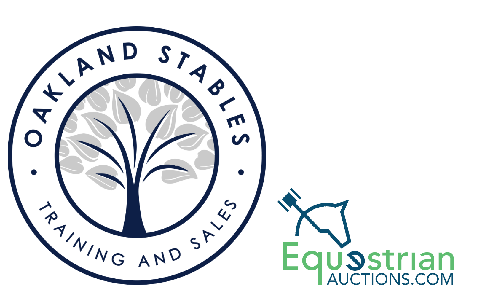 EQUESTRIAN AUCTIONS